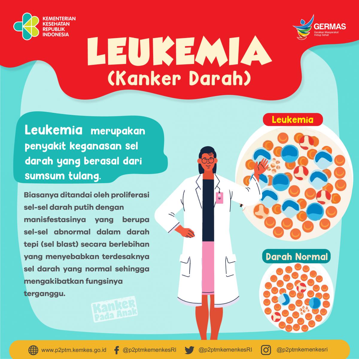 Apa yang dimaksud Leukemia (Kanker Darah)? - Direktorat P2PTM